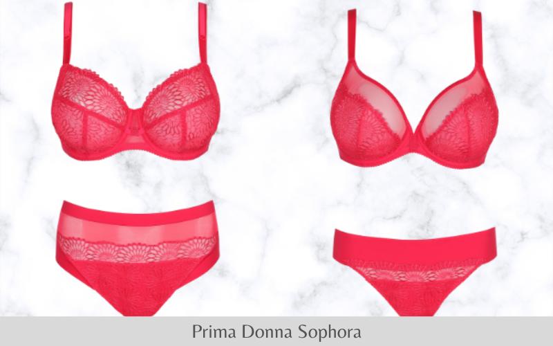 Prima Donna Sophora